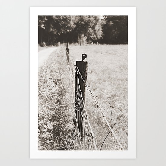 Fence... Art Print