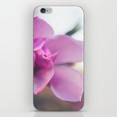 The Magnolia Blooms iPhone & iPod Skin