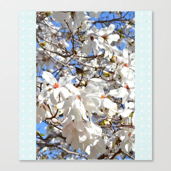 Spring Dogwoods Canvas Print