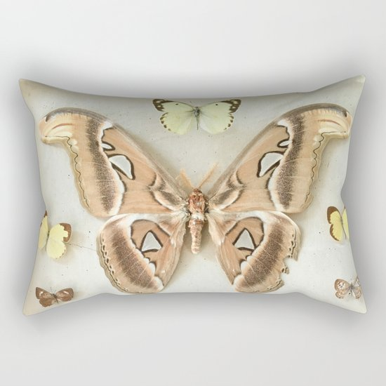 Butterflies and Moths Rectangular Pillow