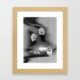 Cat Scan I Framed Art Print
