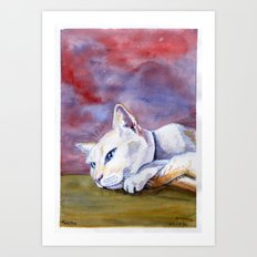 Tabitha at rest Art Print