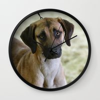 the hound Wall Clocks featuring Hound Pup by IowaShots