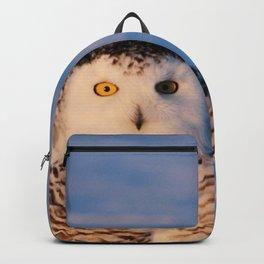Darling In Down Backpack
