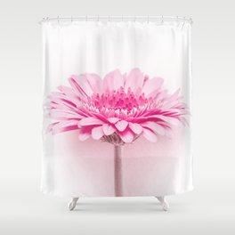 Pink gerbera Shower Curtain