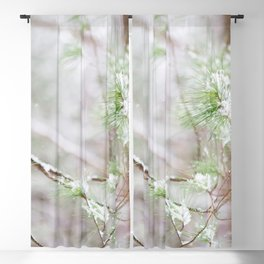 Woodland Winter Greens - Nature Photography Blackout Curtain