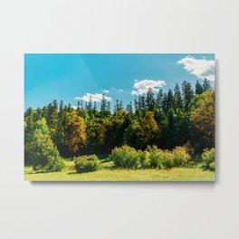 Carpathian Mountains Landscape, Summer Landscape, Transylvania Mountains, Forests Of Romania, Travel Metal Print