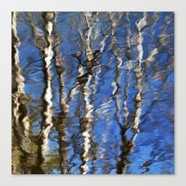 Abstract Aspen Tree Reflection Canvas Print
