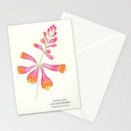 Botanical Sketches 1: Trumpet Honeysuckle Stationery Cards