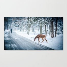 The chill of winter Canvas Print