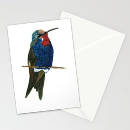 Blue-tufted Starthroat Stationery Cards