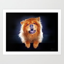 Super Pets Series 1 - Super Chow Art Print