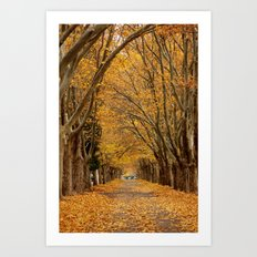 Fall Tunnel Art Print