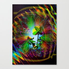 Abstract - Perfection - Fertile Imagination Canvas Print