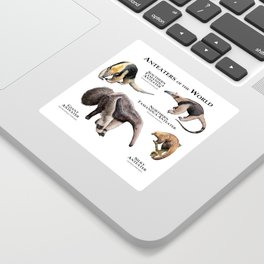 Anteaters of the World Sticker