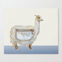 Pack Alpaca Canvas Print