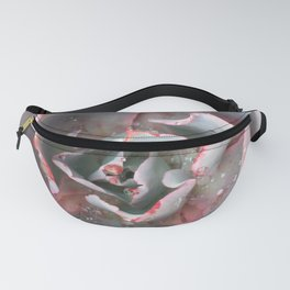 Pink and Blue Succulent Fanny Pack