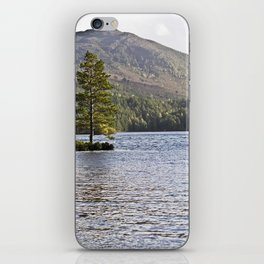 The Lonely Tree iPhone Skin