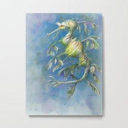 leafy seadragon Metal Print