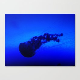 Backstroke Canvas Print
