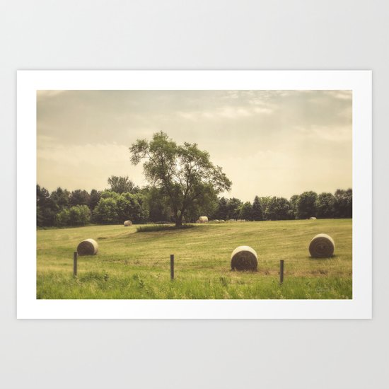 Along the Rural Road Art Print