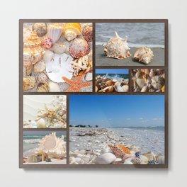 Seashell Treasures From The Sea Metal Print