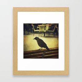 Watch the birdie Framed Art Print