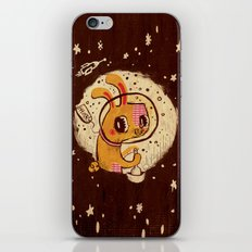Jade Rabbit iPhone & iPod Skin