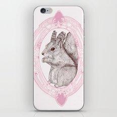 Cameo Squirrel iPhone & iPod Skin
