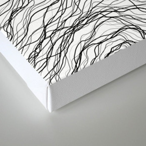 Black veins Canvas Print
