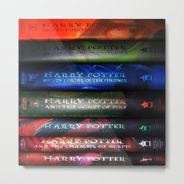 HARRY'S BOOKS COLLECTION Metal Print