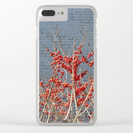 URBAN BEAUTY. Clear iPhone Case