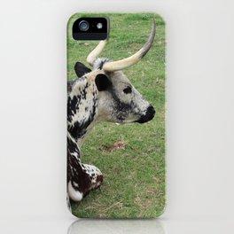 Gazing Longhorn iPhone Case