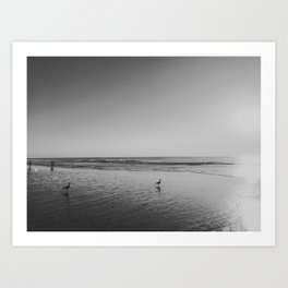 HALF MOON BAY (B+W) Art Print