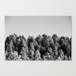 OFF Canvas Print