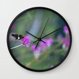 Butterfly On Purple Cornflower Wall Clock