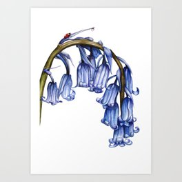 Constancy Art Print