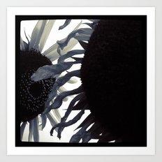 FLOWER 013 Art Print