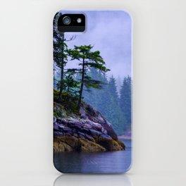 Ice Age Wonder - West Coast Art iPhone Case