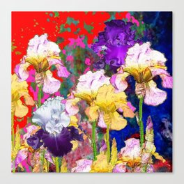 Yellow & Purple Spring Red Iris Garden Canvas Print