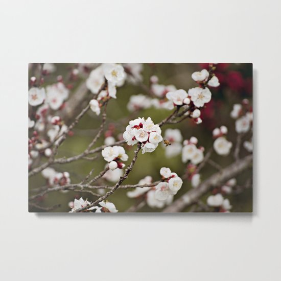 Drawn to the Scent of Spring Metal Print