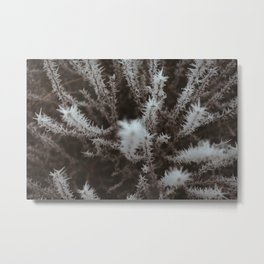 Winter's Mark Metal Print