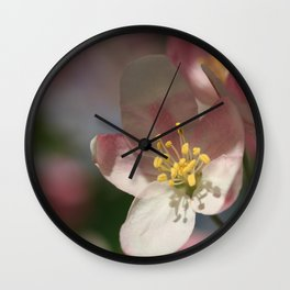 Apple Tree Blossoms 1 Wall Clock