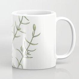 Mesembryanthemum Longistylum from Histoire des Plantes Grasses (1799) by Pierre-Joseph Redoute Coffee Mug