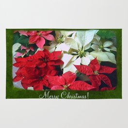 Mixed color Poinsettias 1 Merry Christmas P1F1 Rug