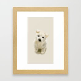 Jindo puppy re Framed Art Print