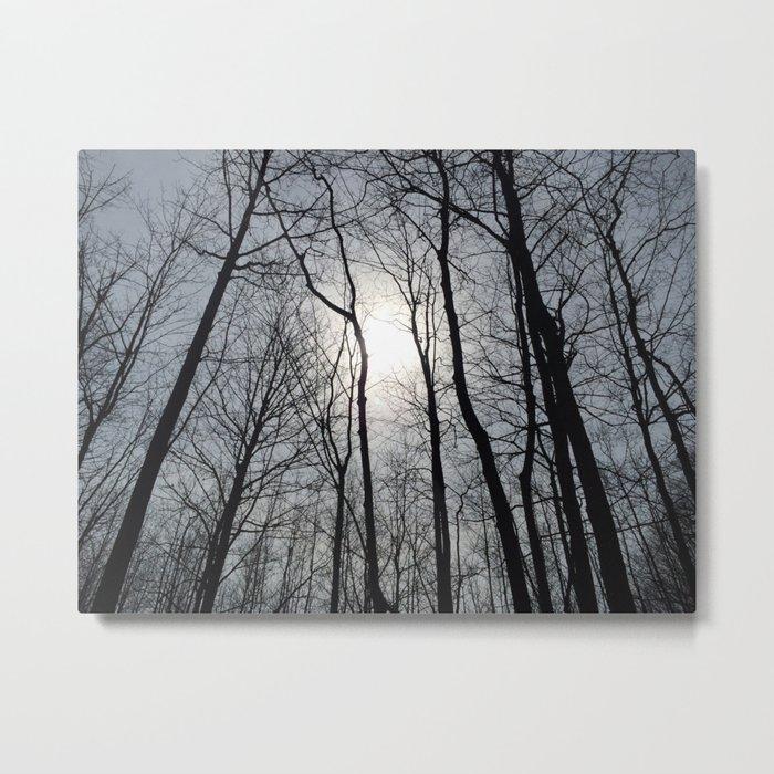 White Sky, Black Trees Metal Print