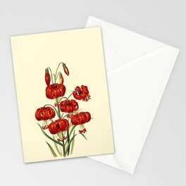 The true Pompone Lily Stationery Cards