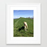 glee Framed Art Prints featuring glee by From the Figg Tree