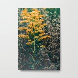 Autumn Botanical Metal Print